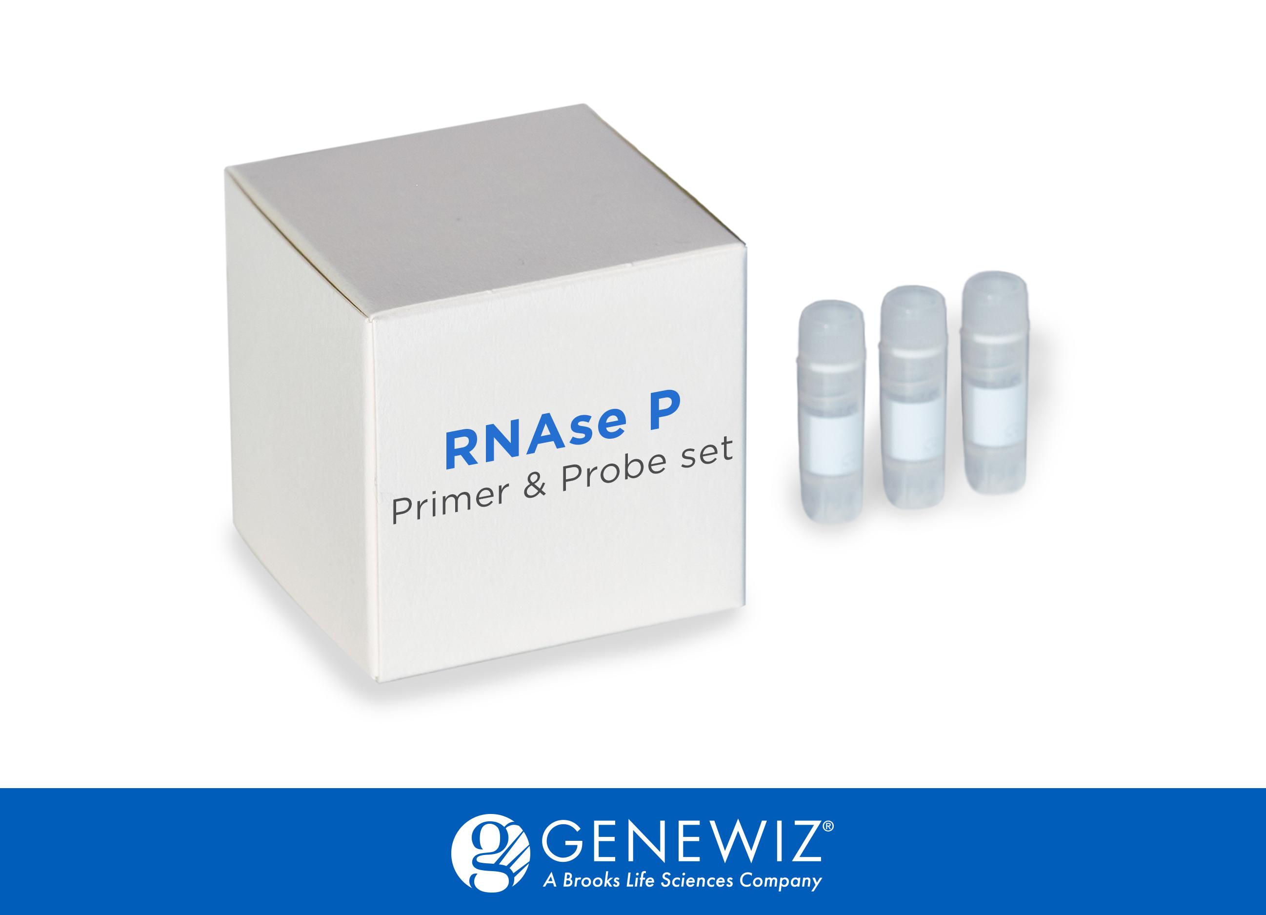 RNase P PROBE AND PRIMER SET